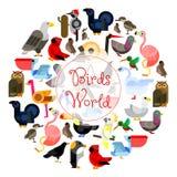 Birds world zoo emblem. Cartoon bird icons Stock Photos