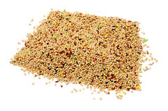 Birdseed Stock Photography