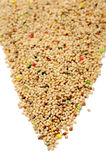 Birdseed Royalty Free Stock Photo