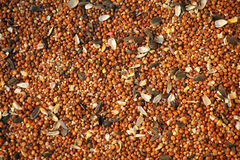 Birdseed Background. Photo featuring birdseed. Designed for use as a background Royalty Free Stock Image