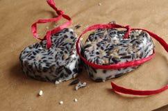 Birdseed Royalty Free Stock Photography