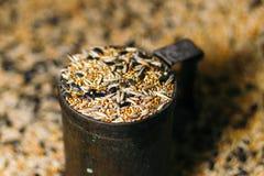 Birdseed grain poured in a vintage mug. close-up. Stock Photos