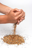 Birdseed and hands Stock Images