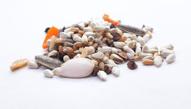 Birdseed. Parrot super birdseed piled on white background royalty free stock photo