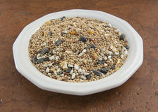 Birdseed on a white plate Stock Images