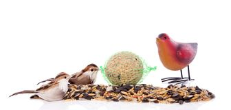 Birdseeds with decorative birds Stock Photography