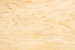 Birdseye Maple Textures #2 Stock Image