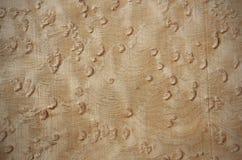 Birdseye maple - veneer wood surface Royalty Free Stock Image