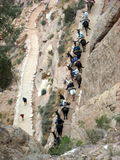 Birdseye View of a Grand Canyon Trail. This birdseye view shows a donkey tour and hikers on a switchback Grand Canyon Trail Royalty Free Stock Image