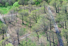 Birdseye view of a park Stock Image