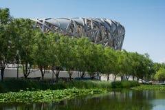 Birdsnest no Pequim, o Estádio Olímpico Imagens de Stock