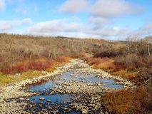 Birdtail Fluss im Fall Lizenzfreie Stockbilder