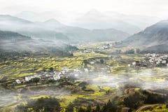 Birdview dei campi della colza in Cina Immagine Stock