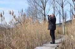 Birdwatcher in Dragoman Swamp. Birdwatcher with binoculars on boardwalk in Dragoman Swamp - Bulgarian Natural Reserve and unique bird species' habitat Royalty Free Stock Photos