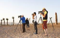 Birdwatchers на северном пляже, Eilat, Израиле стоковое изображение
