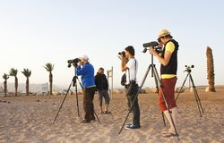 Birdwatchers przy północy plażą, Eilat, Izrael obraz stock