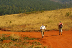 Birdwatchers trekking in South Africa. Elderly father and adult son, both overweight, trekking and observing birds and wildlife royalty free stock image