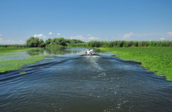 Birdwatching boat trip in the Danube delta Stock Images