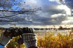 Birdwatching damm på en molnig dag Arkivbilder