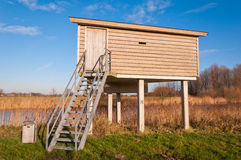 Birdwatching hut in a Duch nature reserve Royalty Free Stock Photo