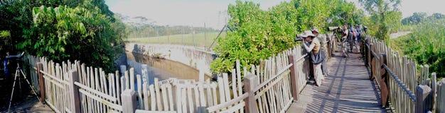 Birdwatching in Kranji marshes royalty free stock photography