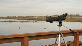 Birdwatching monocular on a tripod on boardwalk Royalty Free Stock Photo
