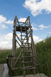 Birdwatching tower in the swamp. Wood birdwatching tower, in a swamp area covered with reed. Picture taken in the Neajlov Delta, near Bucharest stock image