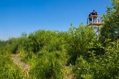 Birdwatching Turm stockbild