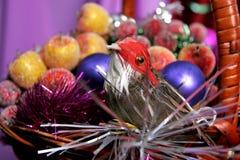 Birdy decorativo Fotografia de Stock