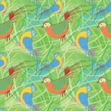 Birdy Muster   Lizenzfreie Abbildung