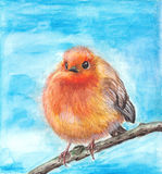Birdy. Watercolor illustration of birdy on blue baclground Stock Images