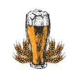 Bière de métier et illustration de vecteur de croquis de bar Image stock