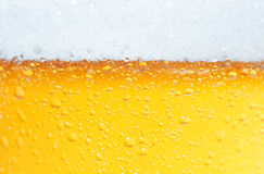 Bière une mousse. Photo stock