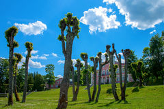 Birini slott latvia Royaltyfri Bild