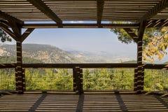 Biriya Forest royalty free stock images