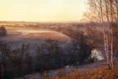 Birken auf den Banken des Flusses stockfotografie