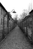 birkenau auschwitz стоковые фотографии rf