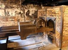 Birkenau di Auschwitz Immagini Stock Libere da Diritti