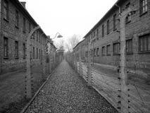 birkenau holocaust3 auschvitz Стоковая Фотография
