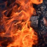 Birkenbrennholz, das in einem Metallmessingarbeiter brennt Stockfoto