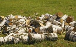 Birkenbrennholz im Haufen auf Gras Lizenzfreie Stockfotos