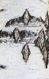 Birkenrinde als Hintergrund Lizenzfreies Stockbild