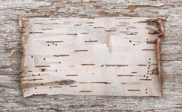 Birkenrinde auf dem alten Holz Stockfoto
