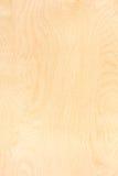 Birkensperrholzmuster Stockbild