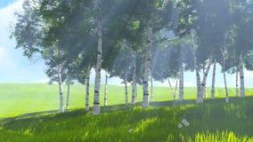 Birkenwaldungsrand im Frühjahr Audio - Birdsong stock abbildung