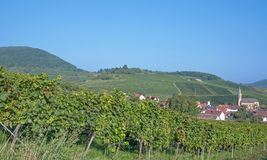 Birkweiler,german Wine Route,Germany Stock Images