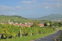 Birkweiler,german Wine Route,Germany Royalty Free Stock Photos