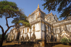 Birma bagan tamples Мьянмы светлое Стоковая Фотография RF