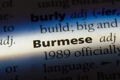 birmaans royalty-vrije stock foto's