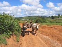 birman vagn som kör bönder Royaltyfri Bild